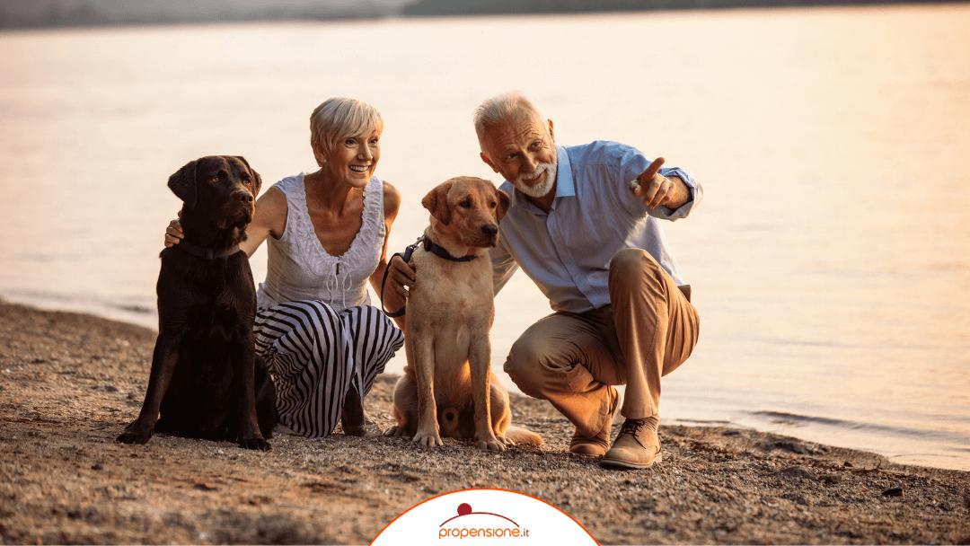 Condizioni di vita dei pensionati: i principali dati IstatTEMPO DI LETTURA: 3 min